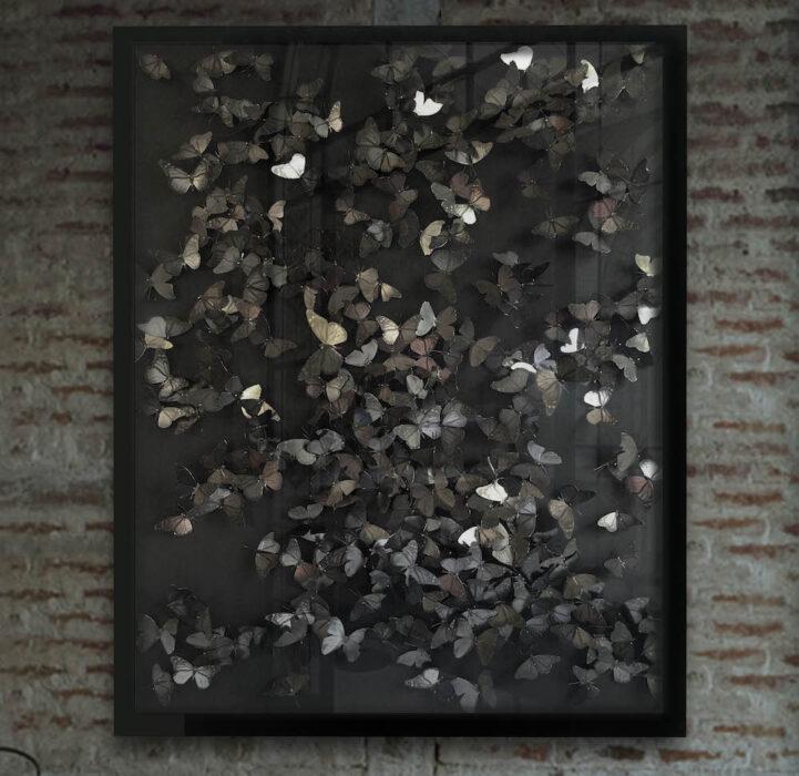 Night Flight_an artwork of paper butterflies by Guilded artist Daniel Byrne